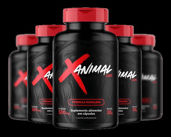 X-ANIMAL